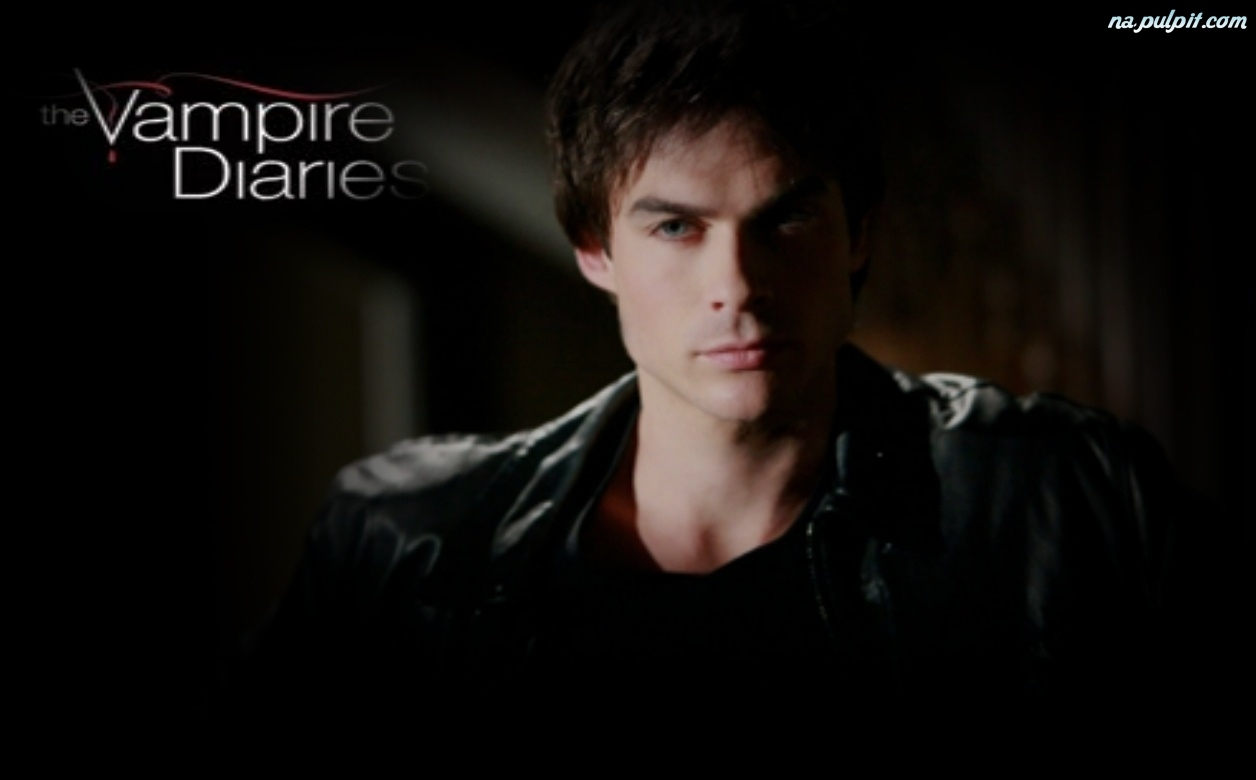 Vampire Diaries, Damon Salvatore